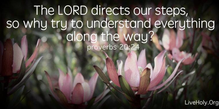 proverbs2024